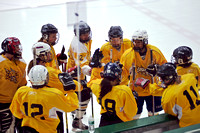 Eagles Women's Hockey